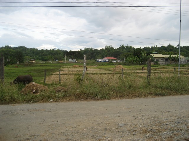 View from property to National Highway